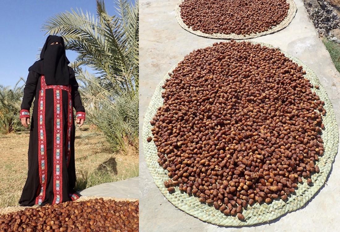Wir lassen die Datteln auf Matten aus Palmblättern ein paar Tage an der Sonne nachtrocknen. Heneya, die im Bild in traditioneller Oasenkleidung zu sehen ist, hat die Matten nach traditioneller Art eigenhändig hergestellt.