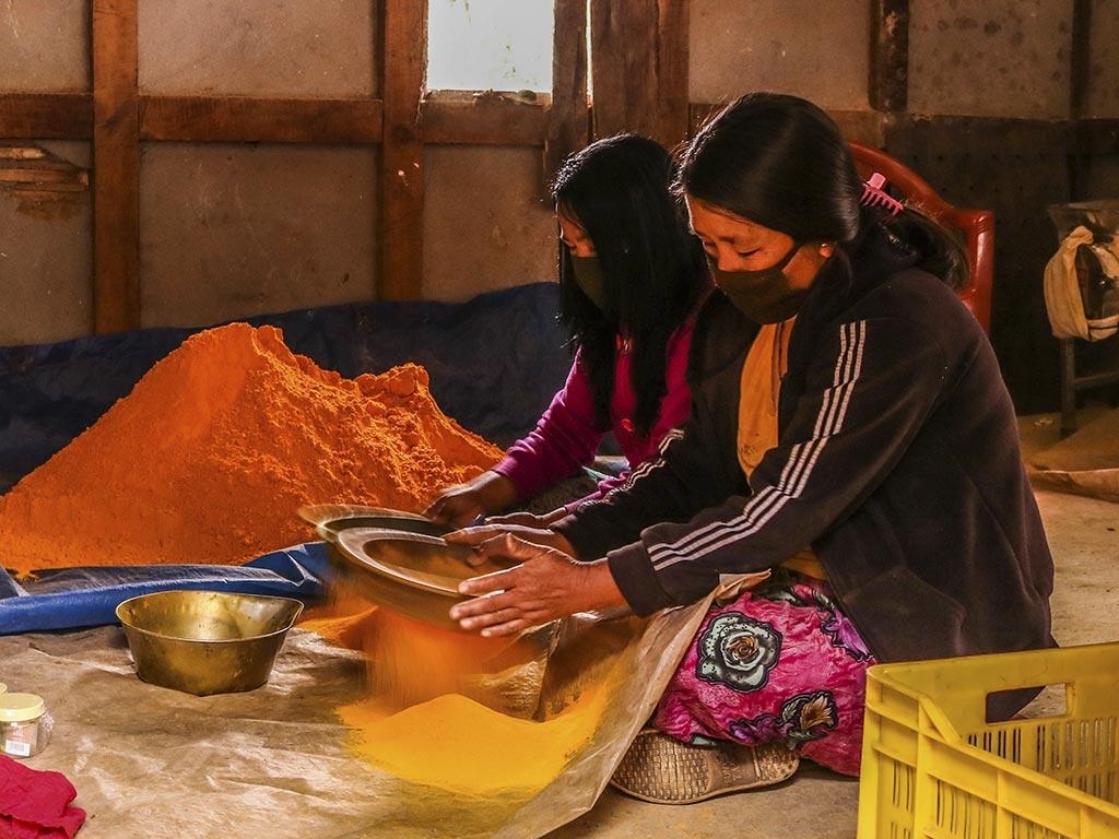 Die Kurkuma- und Ingwerwurzeln werden zu Pulver gemahlen (Foto: Cheku Rangdrel)
